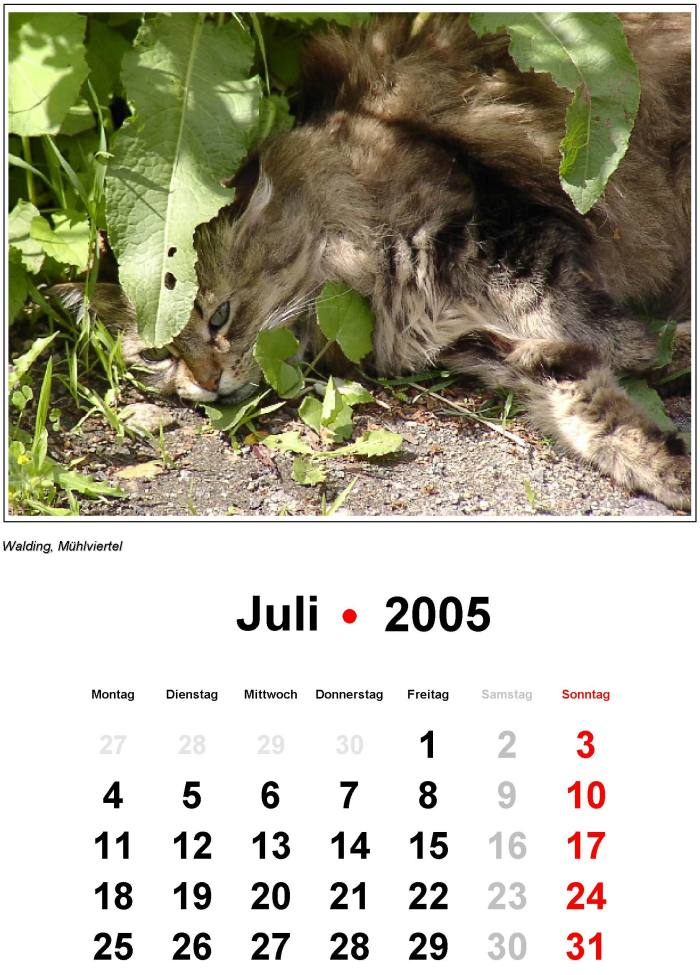 2005 kalender cek weton